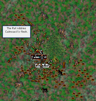 calmcacil_surrounded-2.png
