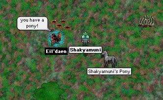 shaky_pony-3.png