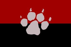 nnkflag.jpg