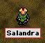 salandra-new.jpg