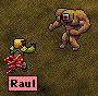 raul_vs_orga.jpg