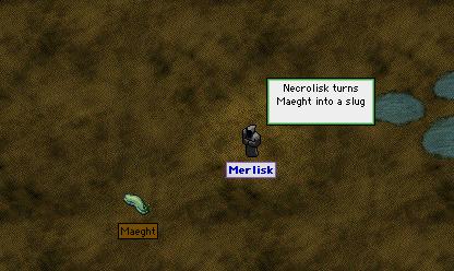 merlisk-maeght-1.png