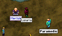 lunaria_in_town.png