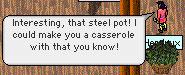 steelpotcasserole.jpg